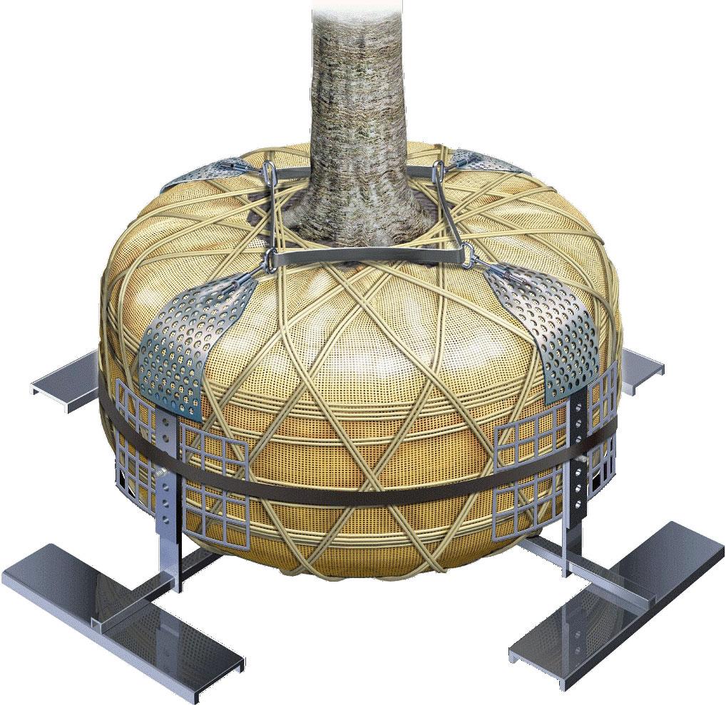 エコロベースサポートJB<強風対応型樹木用地下支柱>